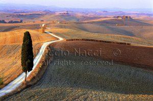 03 Corsano 1998 - Foto Duccio Nacci